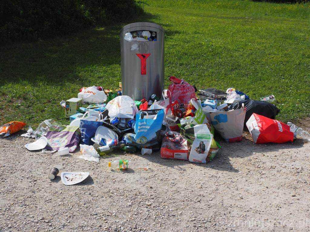 poznań pojemniki śmieci odpady