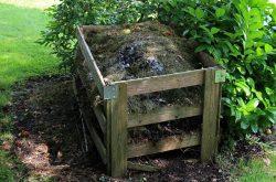 Biodegradacja – co to jest i na czym polega?