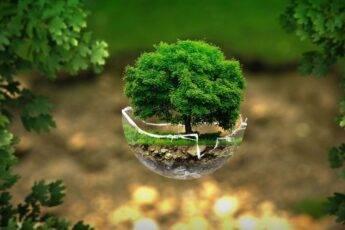 Jak dbać o środowisko? 10 praktycznych porad
