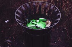 Problemy mieszkańców miast w zakresie gospodarowania odpadami
