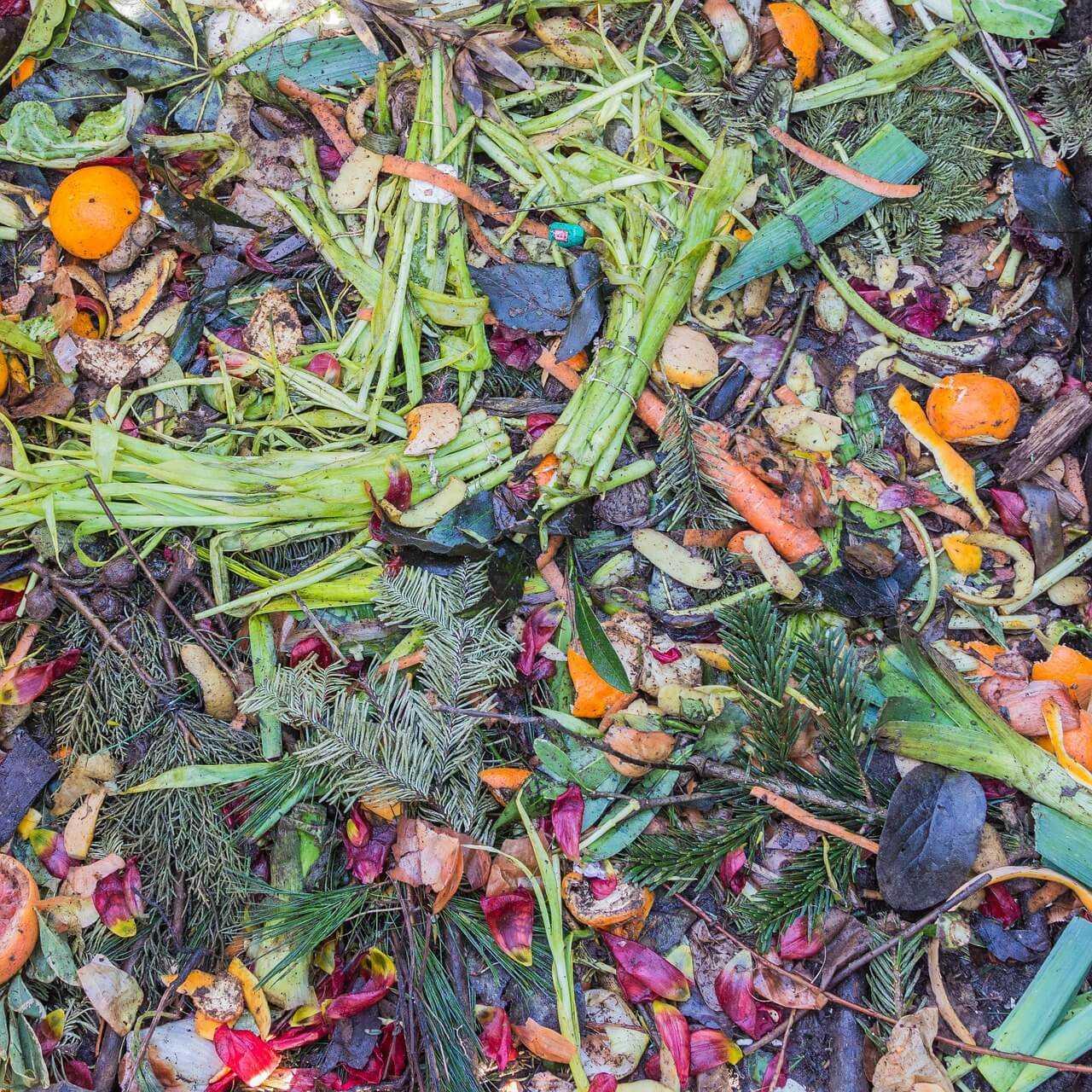 kompostowanie odpadow
