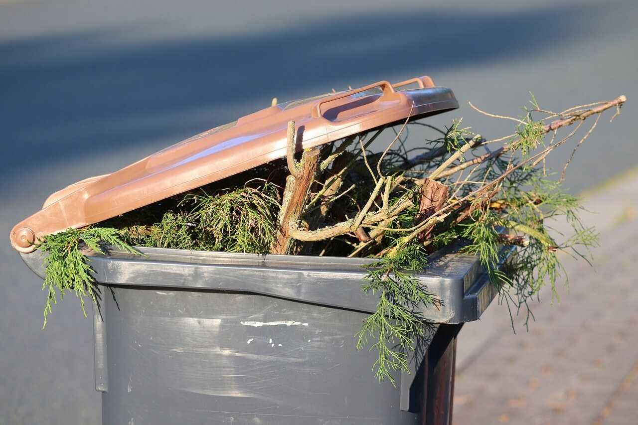 Pojemnik na bioodpady