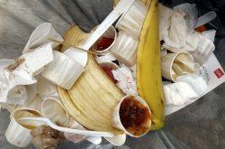 Jak segregować śmieci w domu? 10 praktycznych rad