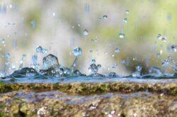 Kwaśne deszcze – definicja, zapobieganie, przyczyny i skutki