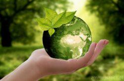 Znani i eko- czyli sławne osoby, które walczą o ochronę środowiska?
