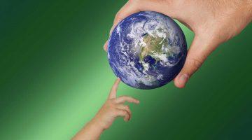 ekologia informacje
