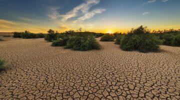 degradacja gleb